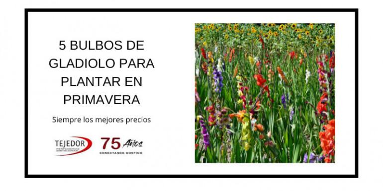 Perfumes Paco Rabanne: elegancia y vanguardia con alma española