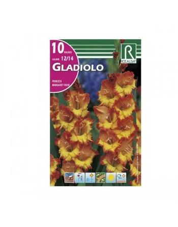 bulbos gladiolos