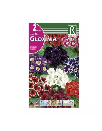ROCALBA GLOXINIA MEZCLA 2 UN